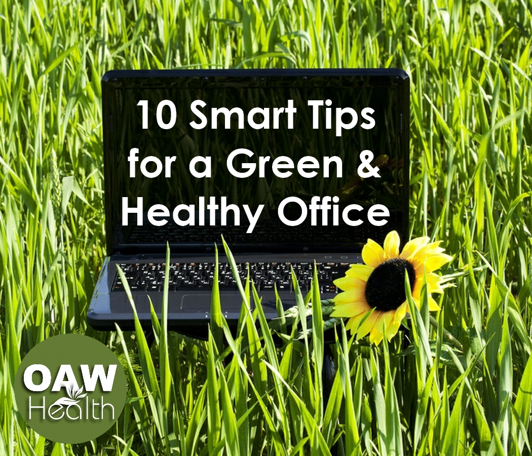 10 Smart Tips for a Green & Healthy Office