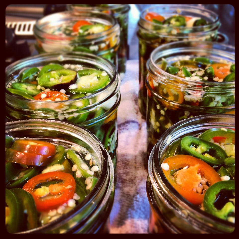 Pickled Jalapeno Peppers & Cowboy Candy Recipes | Exhibit Health