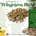 Health Benefits of Fringetree Bark