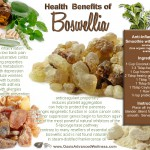 Health Benefits of Boswellia