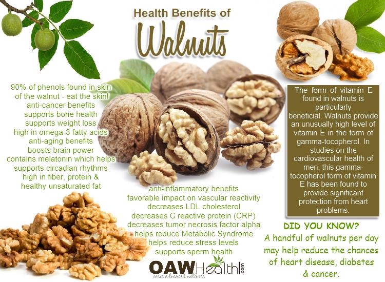 Walnuts and Brain Power