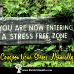 Conquer Your Stress Naturally