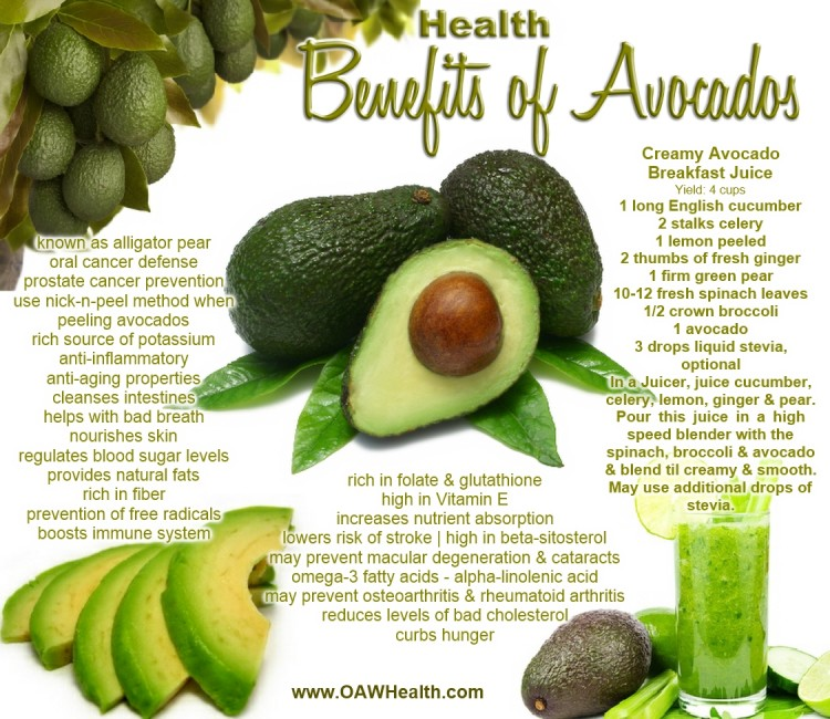 avocados health benefits banner