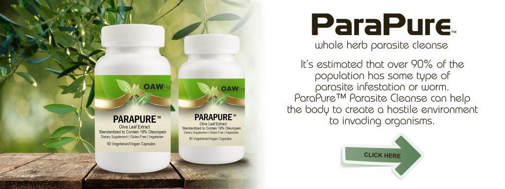 parapure-parasite-cleanse-banner
