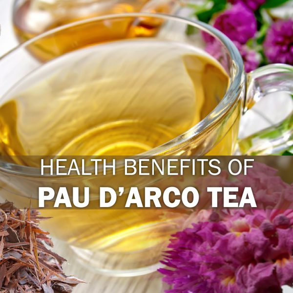 Important Health Benefits of Pau d'Arco Tea