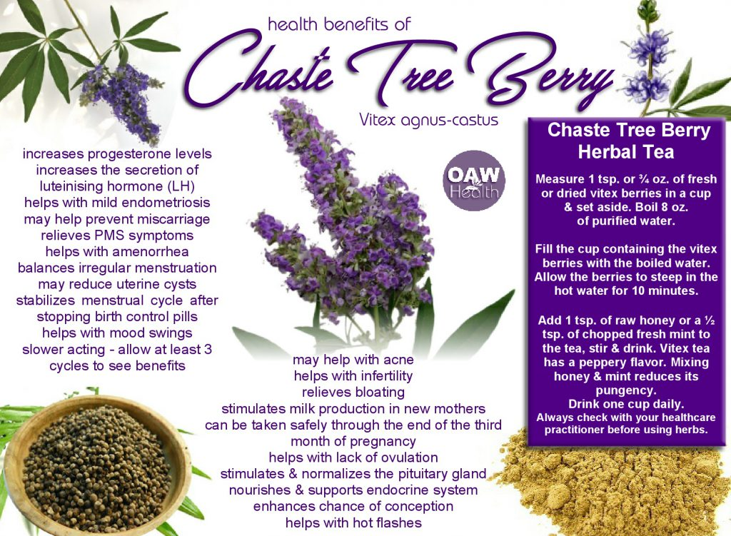 chaste tree berry health benefits