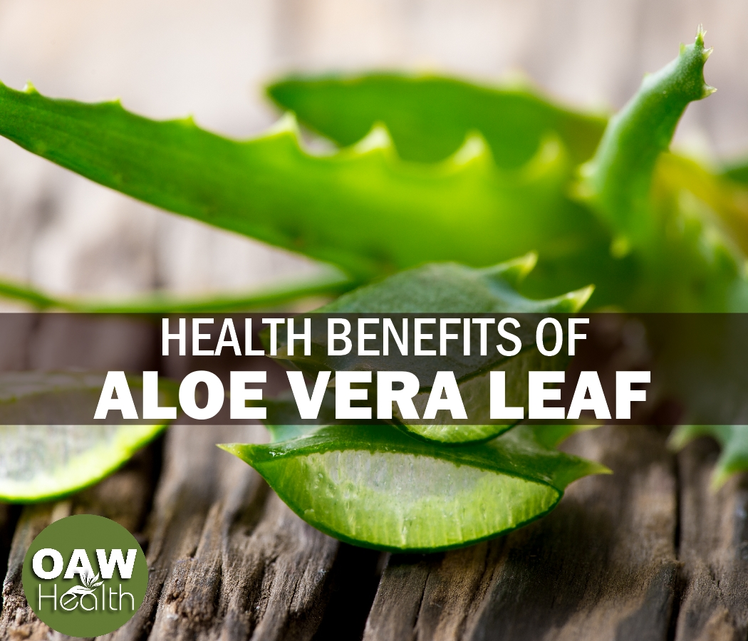Health Benefits of Aloe Vera Leaf