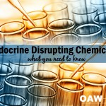 Endocrine Disrupting Chemicals - What You Need to Know