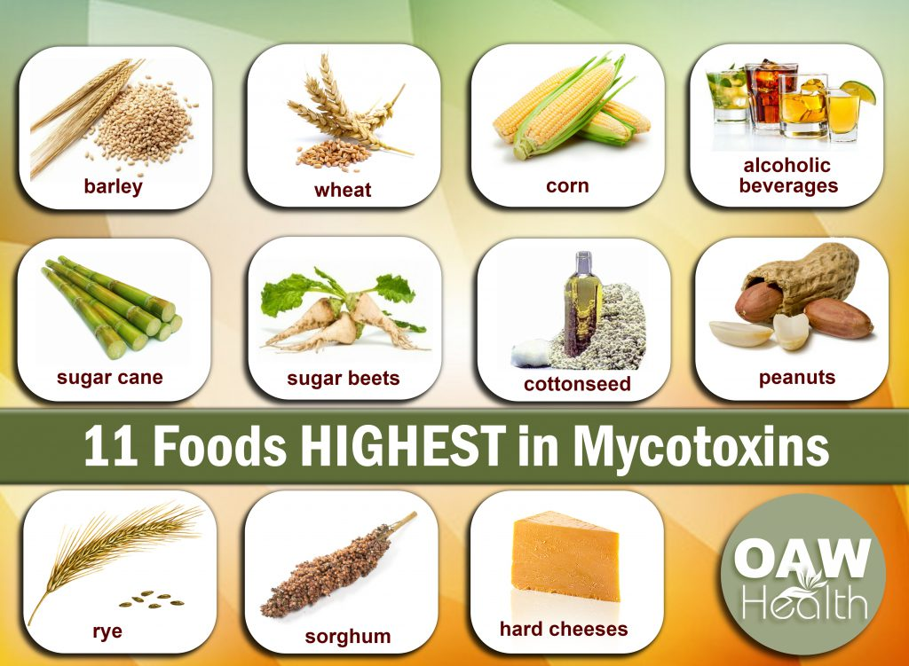 11 foods highest in mycotoxins