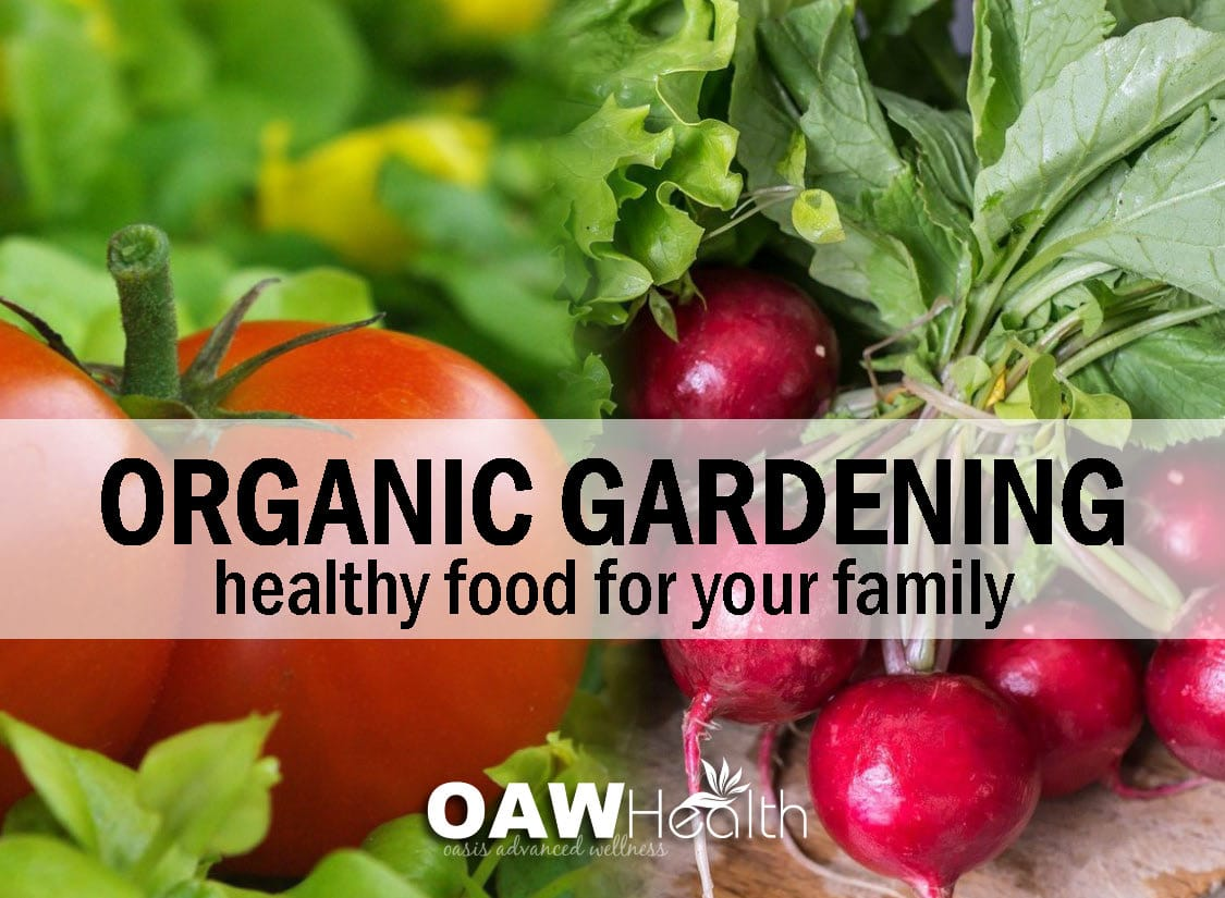 Organic Gardening U2013 Healthy Food For Your Family