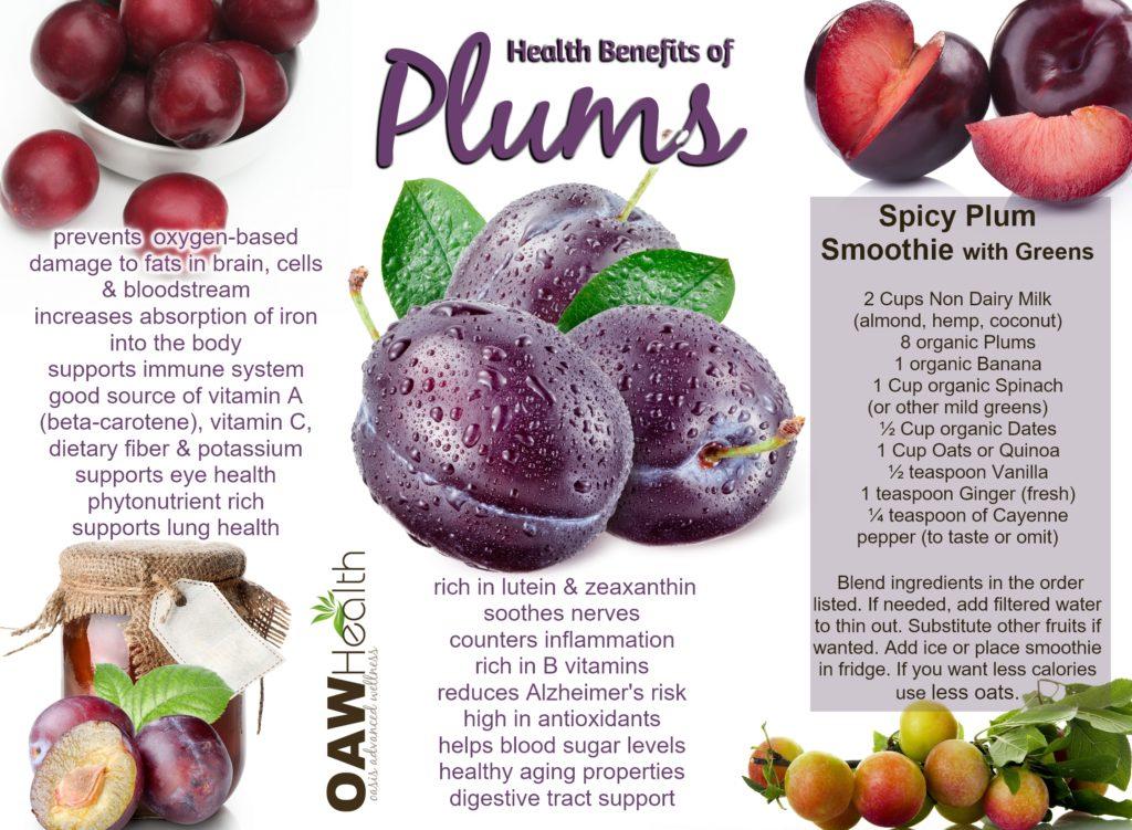 Good Food For Immune Health