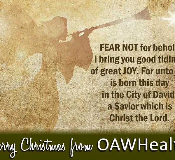 OAW Christmas Video 2015