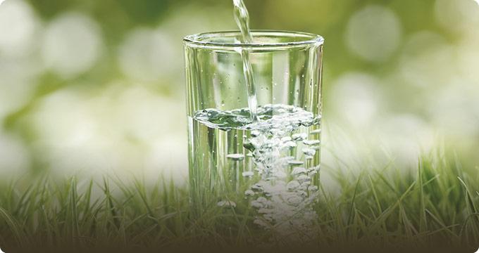 Natural Health Remedies