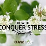 how to conquer stress naturlly