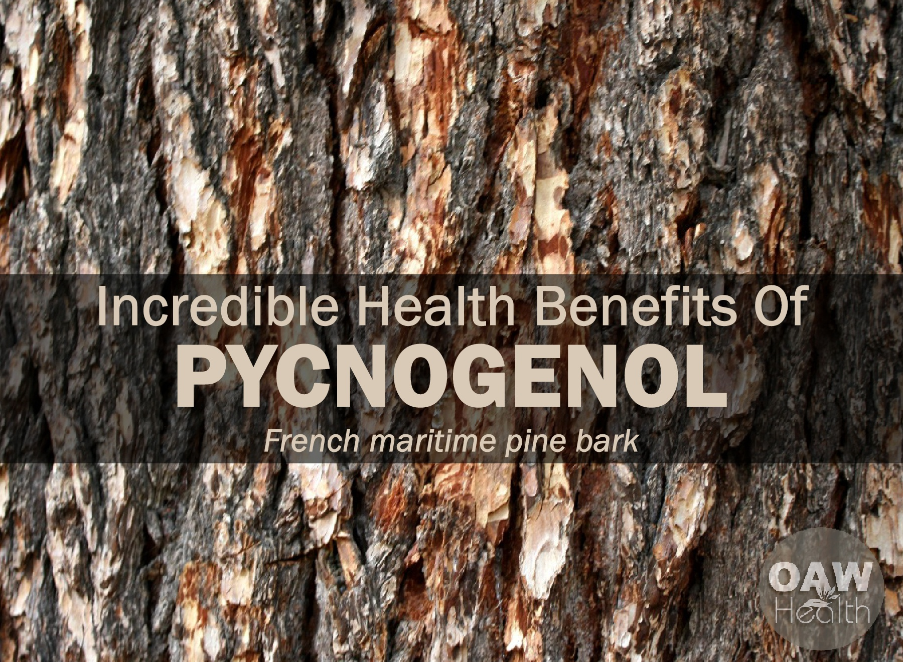 Pycnogenol Incredible Health Benefits Oawhealth
