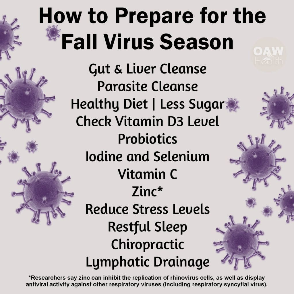 Preparing for the Fall Virus Season
